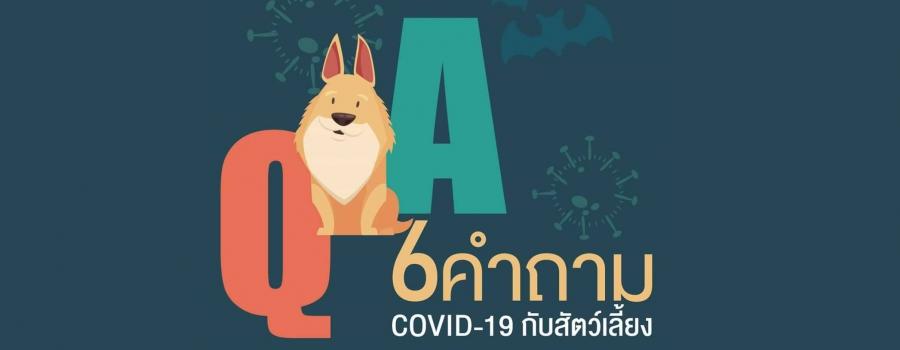6 คำถาม COVID-19 กับสัตว์
