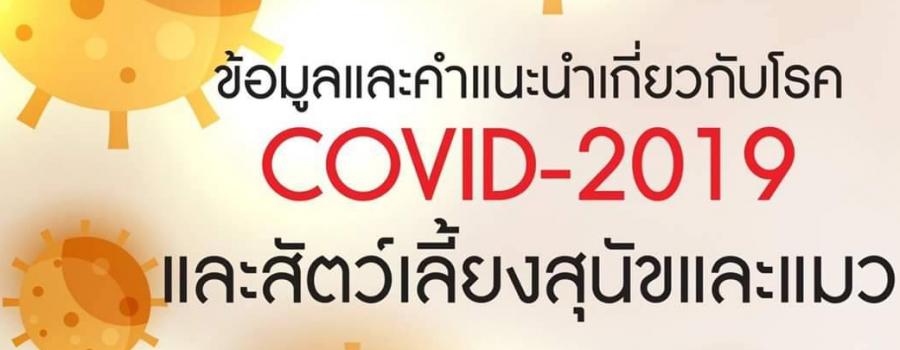 ข้อมูลและคำแนะนำเกี่ยวกับโรค COVID-2019